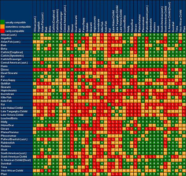 Marine Aquarium Fish Compatibility Chart - thesprucepets.com