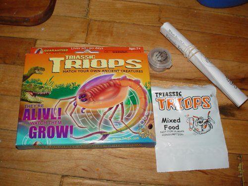 triops kit