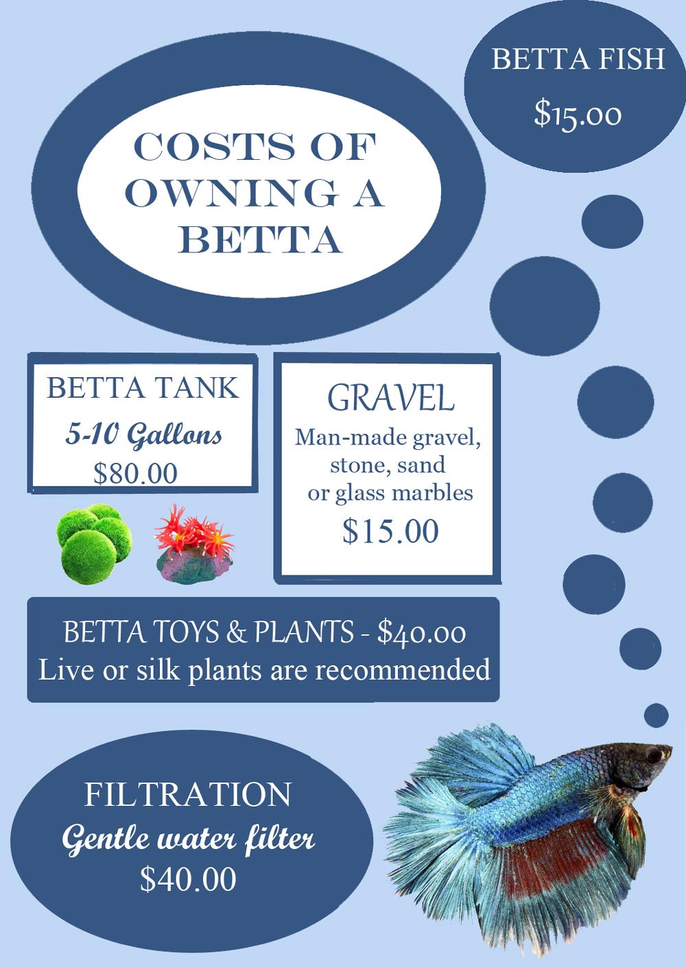 betta-fish-cost