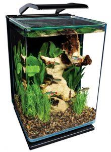 betta-fish-tank