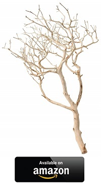 Manzanita-Wood