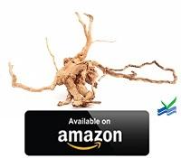 Spider-Wood
