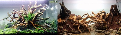 aquarium-spiderwood-decoration