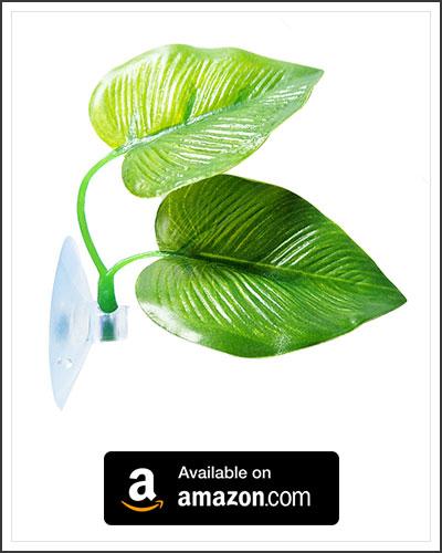 betta-leaf-hammock-1