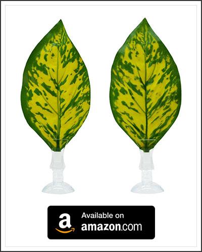 betta-leaf-hammock-3