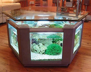aquarium-coffee-table-image-10