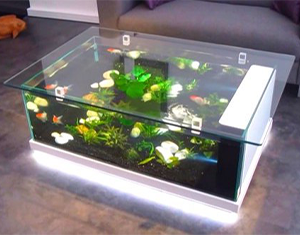 aquarium-coffee-table-image-6
