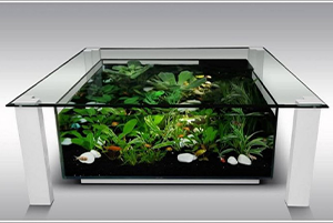 aquarium-coffee-table-over-tank-image