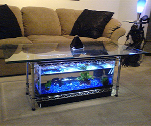 aquarium-coffee-table-shelf-image