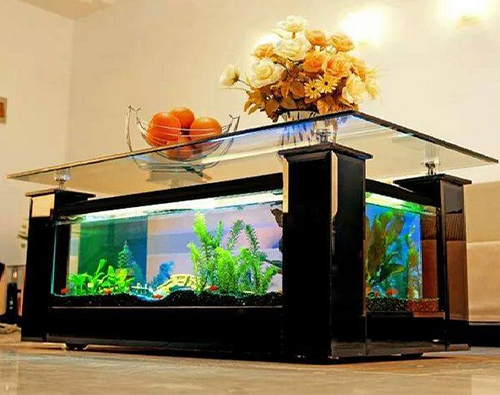 title-image-aquarium-coffee-table-2