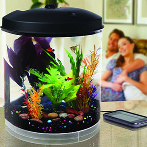 Koller-Products-AquaTunes-Aquarium-Sleep-Sound-Machine