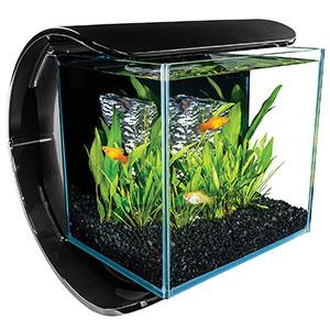 MarineLand-Silhouette-Glass-3-Gallon-LED-Aquarium-Kit