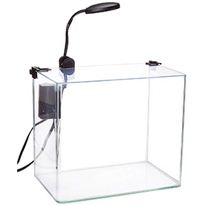 Penn-Plax-Curved-Corner-Glass-Aquarium-Kit