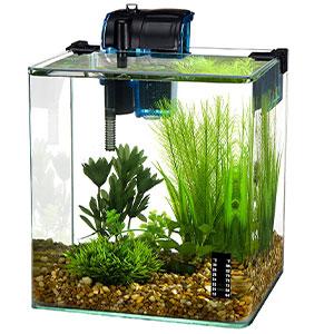 Penn-Plax-Vertex-Desktop-Aquarium-Kit
