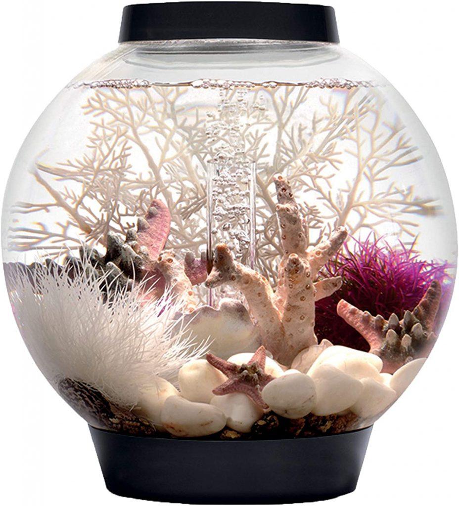 biOrb Halo Aquarium Cool Betta Fish Tank Ideas